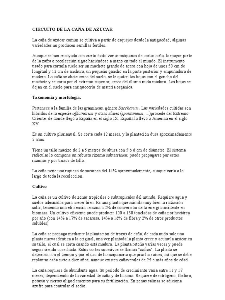 Circuito Productivo De La Caña De Azucar : Circuito de la caÑa de azucar