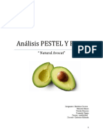 424978539-Analisis-PESTEL-Y-FODA-Natural
