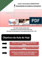 Aula 4 - Assistência de Enfermagem na Insuficiência Adrenal