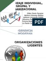 Aprendizaje individual grupal y organizacional