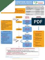 Protocole Transfusion MassivedVF