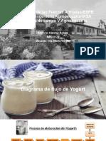 Roblez_Karolay_Diagrama_Yogurth