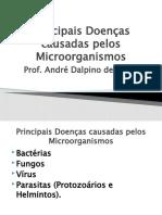02-Principais Doenças Causadas Pelos Microorganismos