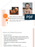 The Female Human Reproductive System
