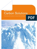 ESBI Carbon Solutions Brochure