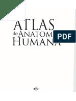 Atlas Da Anatomia Humana 2010 Vargas, Ruiz