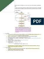 Via da pentose fosfato
