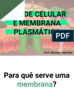 Aula 6- Parede celular, MP e transporte de membrana