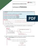 Ficha Resumo Polinómios_a
