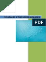 INTRODUÇÃO A NEUROPSICOPEDAGOGIA