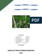 laporan morfologi daun