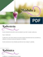 M%F3dulo+2+do+Curso+de+Elixires+e+ess%EAncias+de+cristais