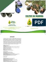 1Cultivo da momona_Projeto UTDs (30)