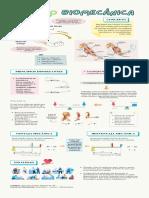 Biomecánica- infografía