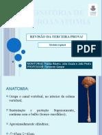 slide neuro 4- MEDULA ESPINAL
