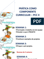 SLIDES APRESENTAÇÃO PCC II