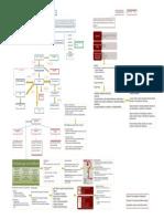 mapa conceptual farmacocinética y farmacodinamia
