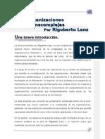 Resumen de Organizaciones Transcomplejas