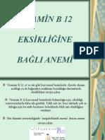 VİTAMİN B 12