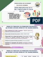 PP  EXPO PRESUPUESTAL - GRUPO N°2 SALUD MENTAL