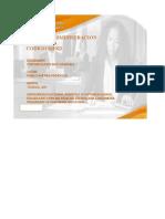 Plantilla Única de Trabajo_CRISTIAN_RICO