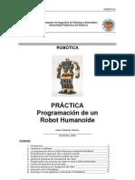programacion robonova