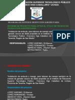 Presentación Informe