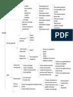 Cuadro Sinoptico Patologias Practica 2