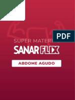 ABDOMEAGUDO sanarflix