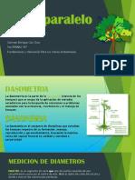 Fundamentos y Metodos Para La Valoracion German Enrique Coc Choc 5to Pnreas b