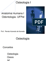 Osteologia Geral