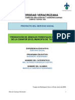 Proyecto Del Servicio Social