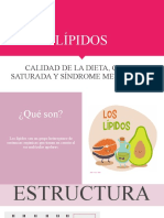 Lípidos y Dietas