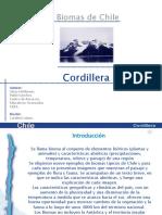 P0001_File_articles-91397_ArchivoPowerPoint_0