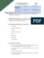 Protocolo de laminulas para macrofagos