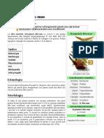 Dryopteris Filix Mas