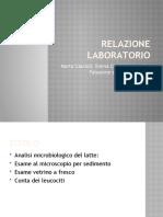 Relazione-laboratorio