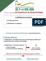 Métabolisme énergétique microbien