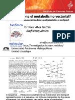 ¿Cómo funciona el metabolismo vectorial? Fisicoquímica de los acarreadores antiport
