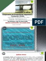 0-Fondo Remediación Medio Ambiental- Estado Zulia