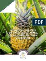 Innovations Techniques Culture de l'Ananas Biologique en Réunion