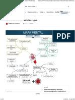 Resumo de Síndrome Nefrítica | Ligas - Sanar Medicina