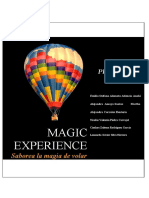 MAGIC_EXPERIENCE_2-2[1] (Recuperado Automáticamente) f