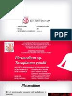 1PPT Clase 9. Plasmodium y Toxoplasma