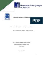 Rapport de stage USJ Mohamad Ousseily (1)