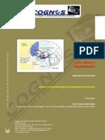 neurobiologia Dependencias Quimicas