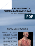 sistemarespiratorioysistemacirculatorio-131206225701-phpapp01