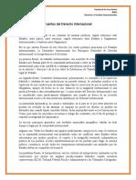 4NV3_DTI_Tarea_Fuentes_Derecho_Internacional_Pereda_Hector