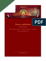 TSOKNYI RNPOCHE - Visione e meditazione