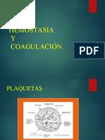 12.  PLAQUETAS -  HEMOSTASIA - F. COAGULACION